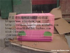 供应兔子笼 鸡笼 鸽子笼 鹌鹑笼 鹧鸪笼 饲料盒 饮水器 宠